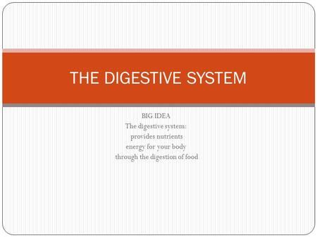 BIG IDEA The digestive system: provides nutrients energy for your body through the digestion of food THE DIGESTIVE SYSTEM.