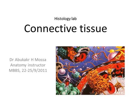 Dr Abukakr H Mossa Anatomy instructor MBBS, 22-25/9/2011 Histology lab Connective tissue.