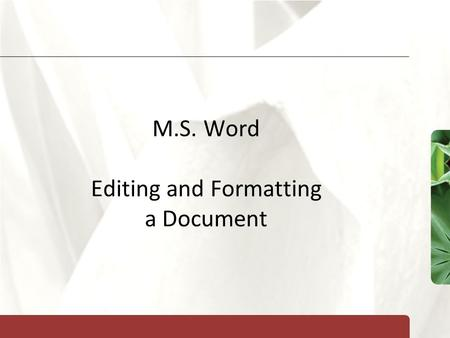 XP M.S. Word Editing and Formatting a Document. XP New Perspectives on Microsoft Office 2007: Windows XP Edition2 Objectives Check spelling and grammar.