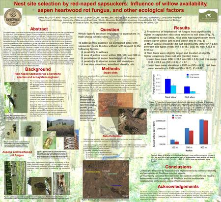 Nest site selection by red-naped sapsuckers: Influence of willow availability, aspen heartwood rot fungus, and other ecological factors Abstract Woodpeckers.