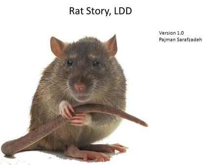 Rat Story, LDD Version 1.0 Pajman Sarafzadeh. Features 3 separate environments -1) Step by step tutorial -2) Traversal -3) Water adventure Introduction.