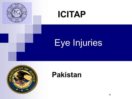 1 Eye Injuries Pakistan ICITAP. 2 Learning Objectives To be able to identify both a normal eye and an eye suffering from an abnormality To be familiar.