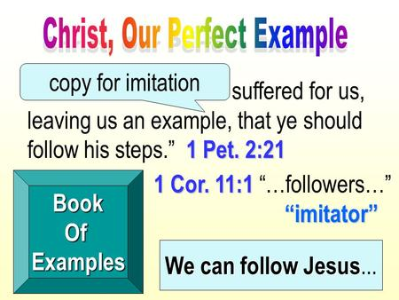 "1 Pet. 2:21 ""...because Christ also suffered for us, leaving us an example, that ye should follow his steps."" 1 Pet. 2:21 BookOfExamples 1 Cor. 11:1 ""imitator"""