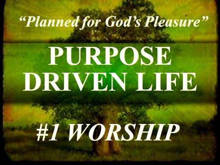 "PURPOSE DRIVEN LIFE ""Planned for God's Pleasure"" #1 WORSHIP."