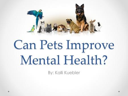 Can Pets Improve Mental Health? By: Kalli Kuebler.