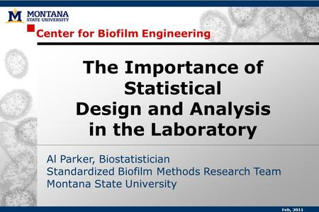Center for Biofilm Engineering Al Parker, Biostatistician Standardized Biofilm Methods Research Team Montana State University The Importance of Statistical.