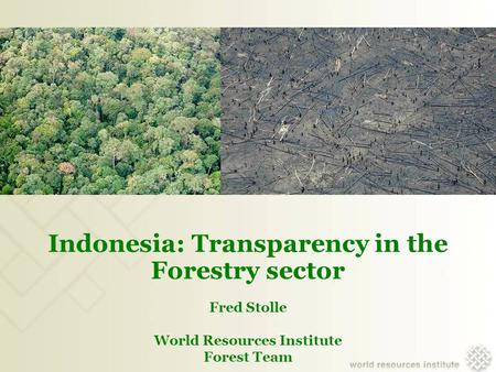 Indonesia: Transparency in the Forestry sector Fred Stolle World Resources Institute Forest Team.