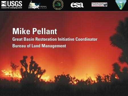 Great Basin: Wildfires, Invasive Species, & Climate Change Mike Pellant Great Basin Restoration Initiative Coordinator Boise, ID Cheatgrass.
