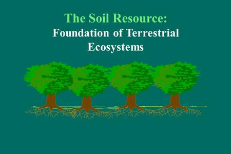 The Soil Resource: Foundation of Terrestrial Ecosystems.