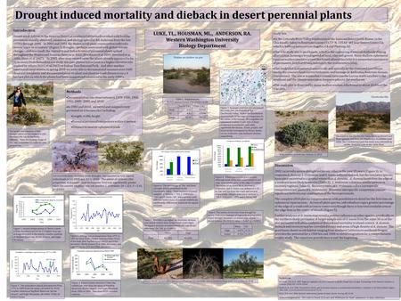 Drought induced mortality and dieback in desert perennial plants LUKE, TL., HOUSMAN, ML., ANDERSON, RA. Western Washington University Biology Department.