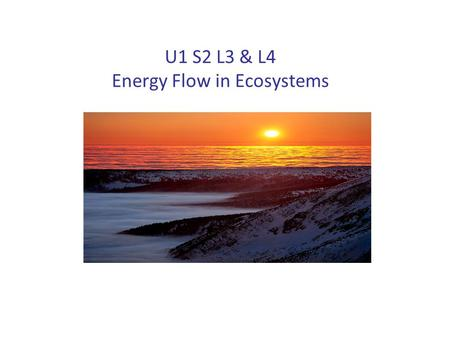 U1 S2 L3 & L4 Energy Flow in Ecosystems. What Affects the amount of Energy Reaching Ecosystems? Albedo Other Environmental Factors.