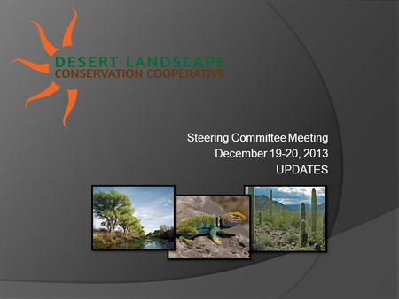 Steering Committee Meeting December 19-20, 2013 UPDATES.