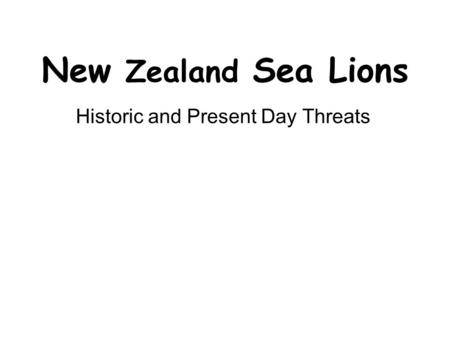 New Zealand Sea Lions Historic and Present Day Threats.