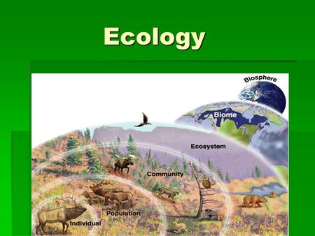 Ecology Ecology.  ECOLOGY- the branch of biology that studies the interactions between organisms and their environment. the branch of biology that studies.