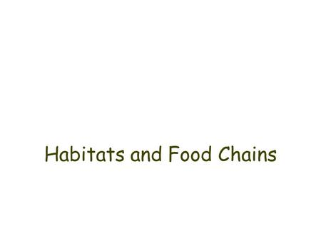 Habitats and Food Chains. What is an ecosystem? An ecosystem refers to all the animals and plants found in one place, and the way they all live together.