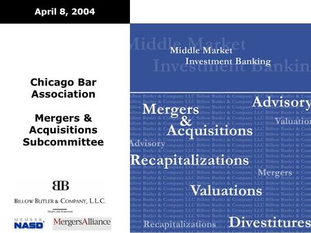 April 8, 2004 Chicago Bar Association Mergers & Acquisitions Subcommittee.