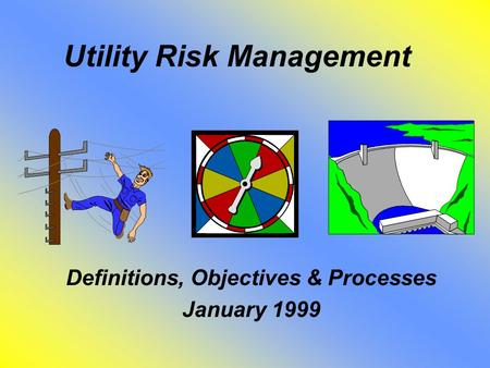 Utility Risk Management Definitions, Objectives & Processes January 1999.