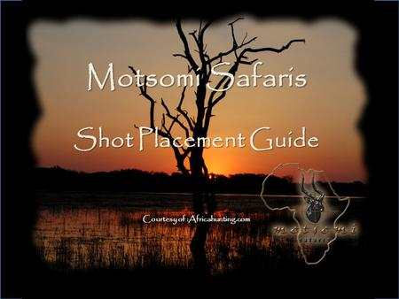 Motsomi Safaris Shot Placement Guide Courtesy of :Africahunting.com
