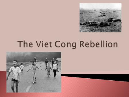  His regime horrified many South Vietnamese  He was considered an 'American Puppet'  A South Vietnamese Communist movement emerged and they were the.