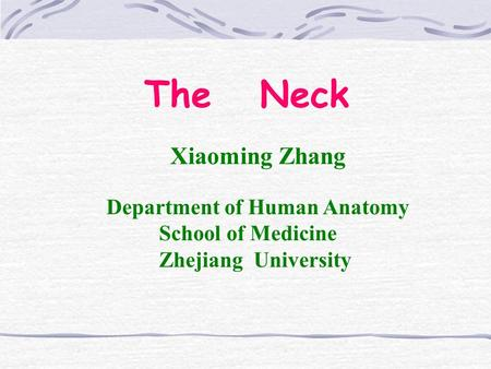 The Neck Xiaoming Zhang Department of Human Anatomy School of Medicine Zhejiang University.