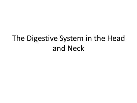 The Digestive System in the Head and Neck