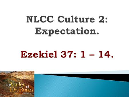  We are thinking about the culture of the church  PARTICIPATION &  EXPECTATION.