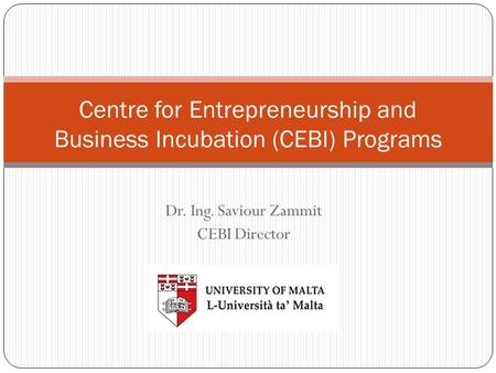 Centre for Entrepreneurship and Business Incubation (CEBI) Programs Dr. Ing. Saviour Zammit CEBI Director.
