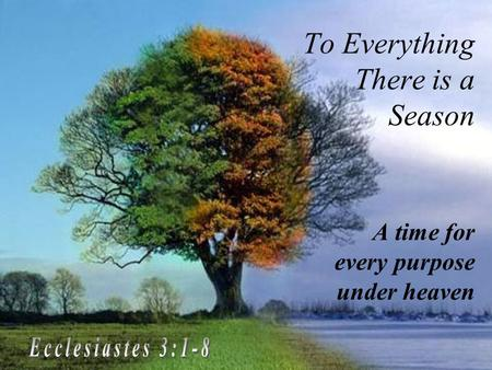 To Everything There is a Season A time for every purpose under heaven.