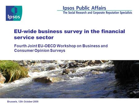 Fourth Joint EU-OECD Workshop on Business and Consumer Opinion Surveys EU-wide business survey in the financial service sector Brussels, 12th October 2009.
