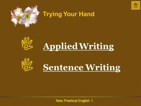 New Practical English 1 Trying Your Hand Applied WritingApplied Writing Sentence Writing.