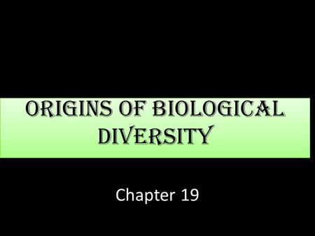 Origins of Biological Diversity Chapter 19. The Fossil Record Provides Evidence to Life's History Fossils form when organisms are buried in sedimentary.