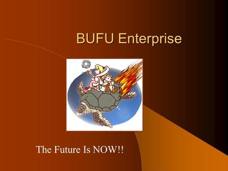 BUFU Enterprise The Future Is NOW!! Company Overview Team – > – Systems Analyst – >– Business Consultant – Chris Vance – Network Analyst – >– Project.