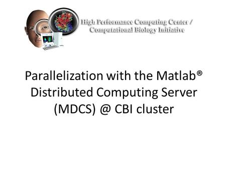 Parallelization with the Matlab® Distributed Computing Server CBI cluster.