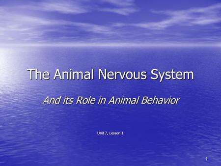 The Animal Nervous System