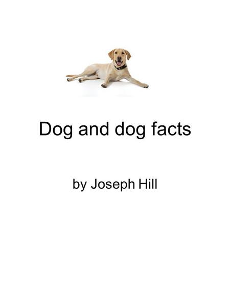 Dog and dog facts by Joseph Hill. 2 Table of Contents What do dogs eat? Page 3 Where do dogs live? Page 4 Why do chase cats? page 5 Why are dogs good.