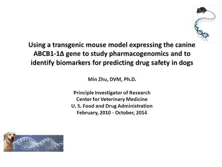 Using a transgenic mouse model expressing the canine ABCB1-1∆ gene to study pharmacogenomics and to identify biomarkers for predicting drug safety in dogs.
