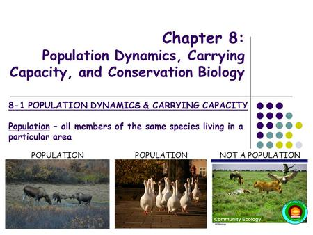 Chapter 8: Population Dynamics, Carrying Capacity, and Conservation Biology POPULATION NOT A POPULATION 8-1 POPULATION DYNAMICS & CARRYING CAPACITY Population.