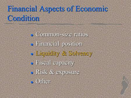 Financial Aspects of Economic Condition l Common-size ratios l Financial position l Liquidity & Solvency l Fiscal capacity l Risk & exposure l Other.