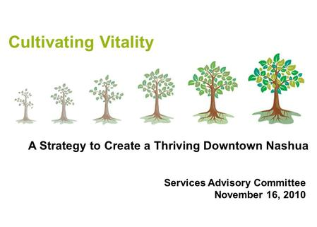 Cultivating Vitality Services Advisory Committee November 16, 2010 A Strategy to Create a Thriving Downtown Nashua.
