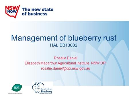 Management of blueberry rust HAL BB13002
