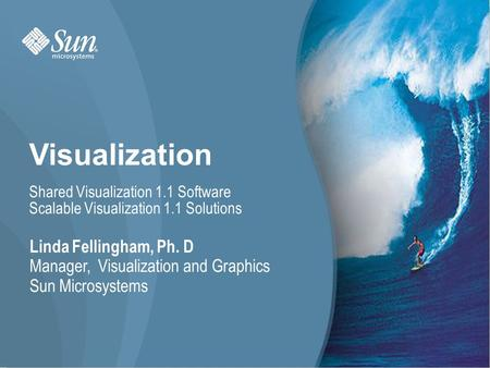 Visualization Linda Fellingham, Ph. D Manager, Visualization and Graphics Sun Microsystems Shared Visualization 1.1 Software Scalable Visualization 1.1.