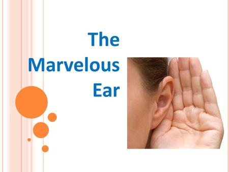 The Marvelous Ear. How Do Our Ears Work? Quiz 1. How do humans hear sounds? 2. How does human hearing work? Sketch and label the system. 3. Do you know.