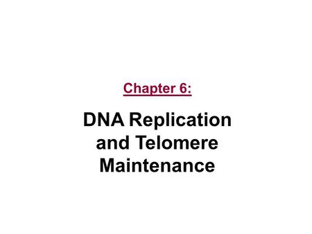Chapter 6: DNA Replication and Telomere Maintenance.