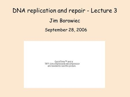 DNA replication and repair - Lecture 3 Jim Borowiec September 28, 2006.