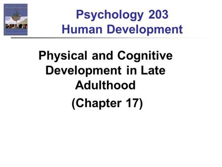 physical and cognitive development in middle adulthood Psyc 125 human development 4/30/2013 lecture 11 middle adulthood middle adulthood physical development physical changes - strength, joints the nature of middle adulthood physical development cognitive development - intelligence - careers.