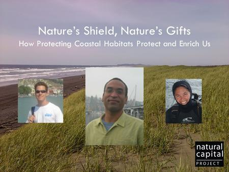 Nature's Shield, Nature's Gifts How Protecting Coastal Habitats Protect and Enrich Us.