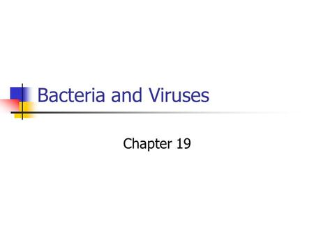 <strong>Bacteria</strong> <strong>and</strong> <strong>Viruses</strong> Chapter 19. Classification Kingdom…Moneran Domain a) Euchaea b) <strong>Bacteria</strong>.