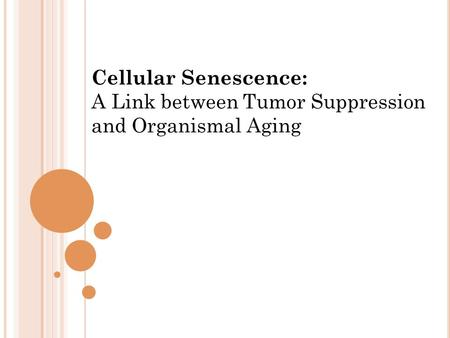 Cellular Senescence: A Link between Tumor Suppression and Organismal Aging.