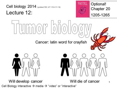 Tumor biology Lecture 12: Optional! Chapter