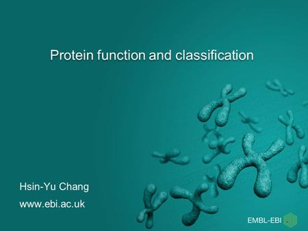 Protein function and classification Hsin-Yu Chang www.ebi.ac.uk.